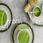 น้ำตบชาเขียว ประโยชน์ดี ๆ ที่ซึมซาบสู่ผิวอย่างเป็นธรรมชาติ