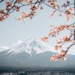 """เปิดหมดเปลือก """"โฟมล้างหน้าภูเขาไฟ"""" โฟมล้างหน้าตัวดังจากญี่ปุ่น"""