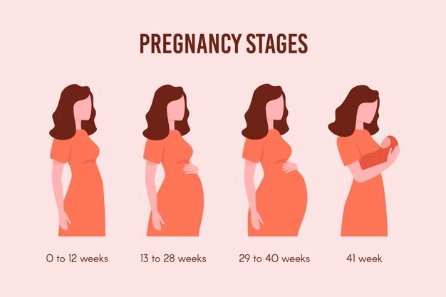 คุณแม่มือใหม่กับท้อง 2 สัปดาห์ เป็นยังไงบ้างนะ