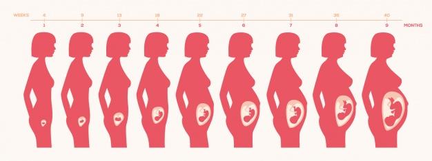 ท้อง 9 สัปดาห์ pantip