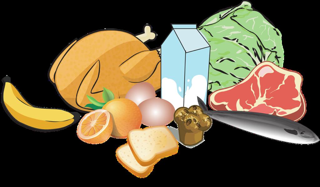 ทํา จมูก กิน ไข่ ได้ ไหม