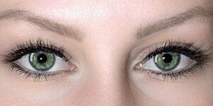 ต่อขนตาสายฝอ