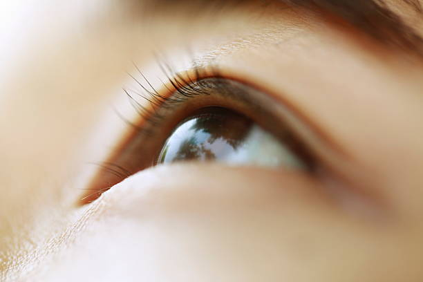 หางตาตก ต้องยกด้วยการร้อยไหม!! ขอแนะนำ 「#5 คลินิกร้อยไหมยกหางตา」 สวยปังหางตาเชิด!!