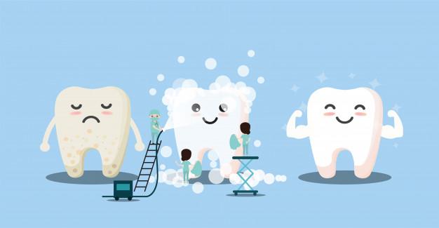 จัด ฟัน ฟัน ผุ